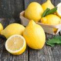Il limone, bello da vedere, agro da gustare, ma con tante proprietà salutari