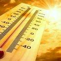 Attualità Calici di Stelle e come difendersi dal grande caldo