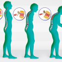Di prevenzione e cura   dell'osteoporosi e di qualche altra curiosità, di questo tratteremo nella Rubrica di Venerdì 18 Maggio.