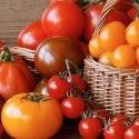 Delle virtù salutari del pomodoro e di qualche altra curiosità, di questo tratteremo nella Rubrica di Venerdì 1 Giugno.