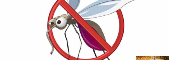Degli accorgimenti da utilizzare per difendersi dalle zanzare e di qualche altra curiosità, di questo tratteremo nella Rubrica di Venerdì 21 Luglio.