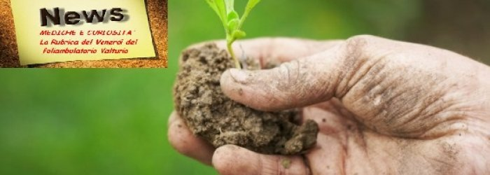 Convegno sull'Agricoltura Locale per la salute dell'uomo e dell'ambiente