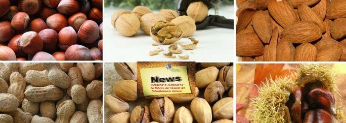 La frutta secca e le sue grandi proprietà, per diminuire il girovita addominale e proteggere il sistema cardiovascolare,
