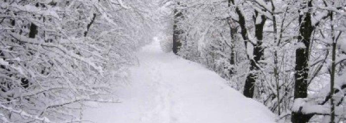 Consigli utili per difendersi dal grande freddo di questi giorni