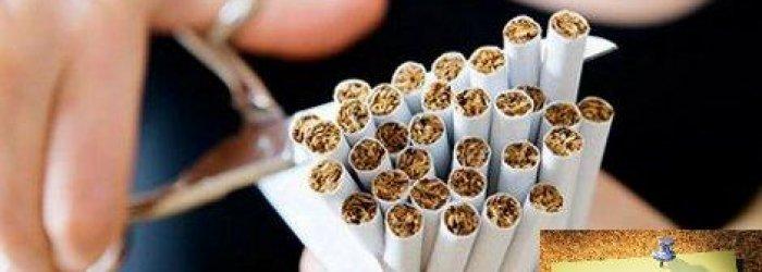 I danni che il fumo provoca sugli organi bersaglio