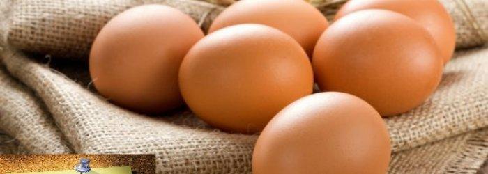 Della rivalutazione del valore nutritivo dell'uovo e altre curiosità