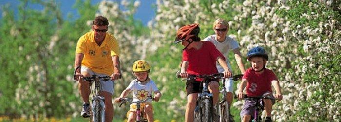 Qualche consiglio per evitare i pericoli che comporta l'utilizzo della bicicletta e qualche altra curiosità, di questo tratteremo nella Rubrica di Venerdì 2 Giugno.